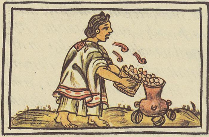 Woman Blowing on Corn, Florentine Codex