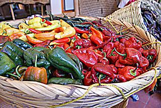 Chiles Multicolores