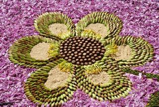 Flor de Pétalos