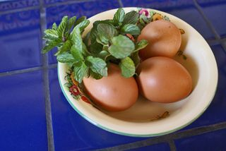 Hierbabuena con Huevos