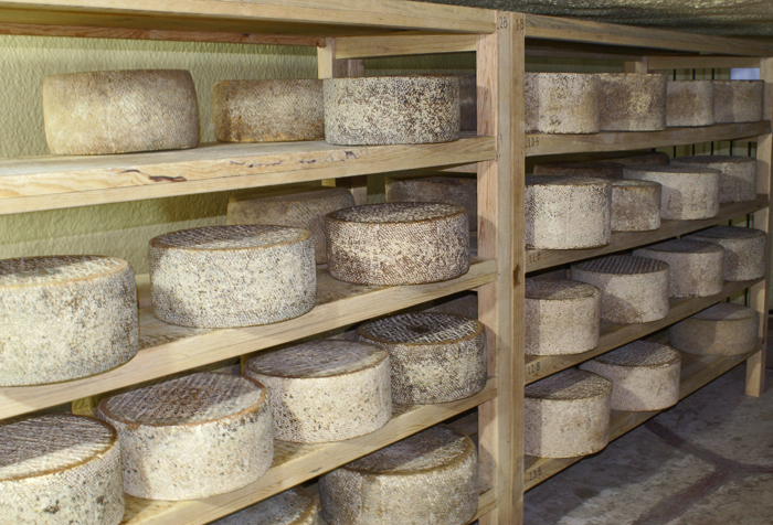 Queso Cava Shelves to use