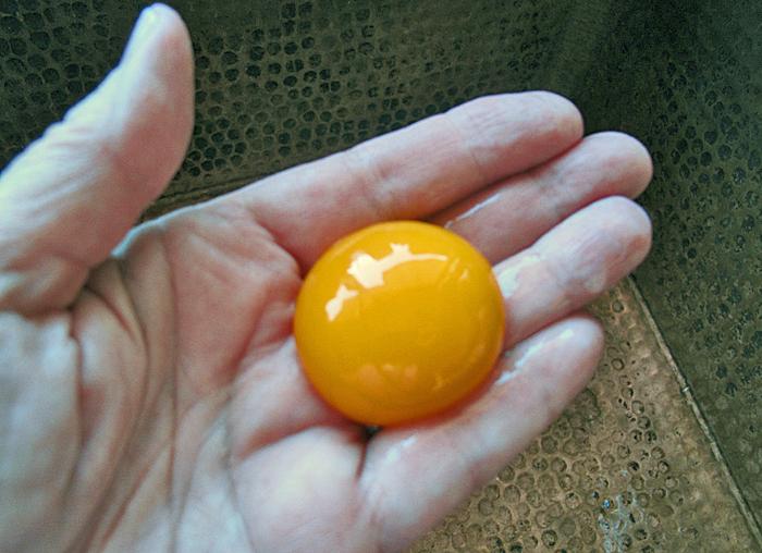 Flan Separate Egg