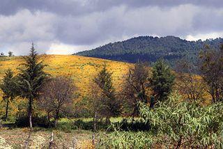 Capula Countryside