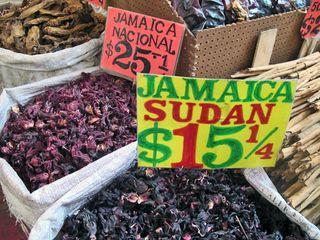 Recorrido Jamaica Nacional y Sudan