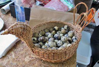 Mercado 100 Huevo de Codorniz