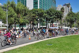 Alebrijes Paseo de la Reforma Domingo