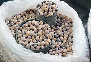 Huesos salados de capulín, Mercado la Merced
