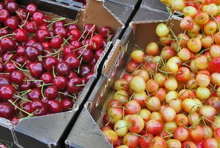 Paris Marché d'Aligre Two Kinds of Cherries