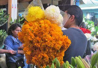 Jamaica Cempasúchil y Crisántamo