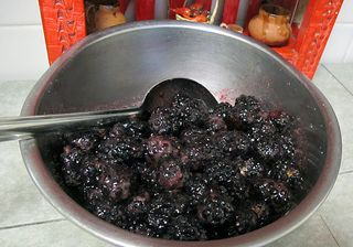 Cobbler Blackberries