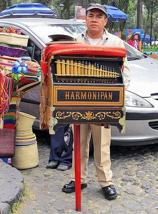 Organ Grinder, San Ángel 2013