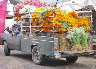 Jamaica Camioneta Flores Muertos