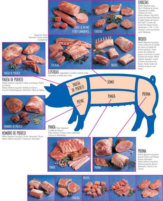 Pork Cuts Chart Spanish