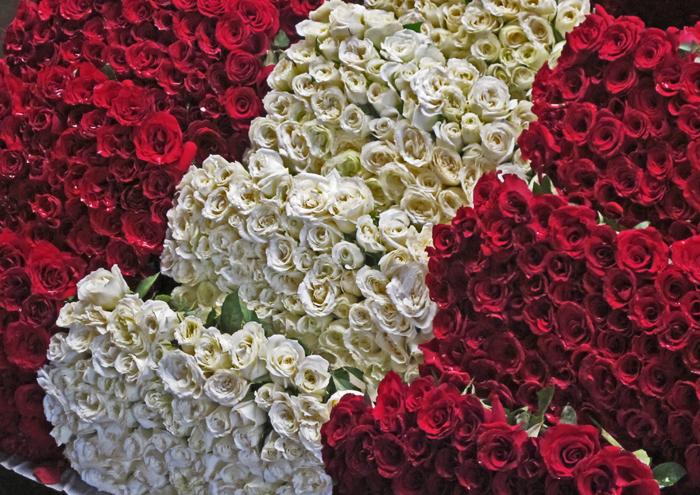 Rosas Rojas y Blancas 30 pesos 6 docenas