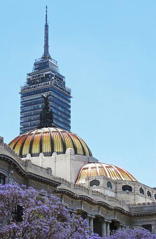 Bellas Artes con Jacaranda 11-03-2014
