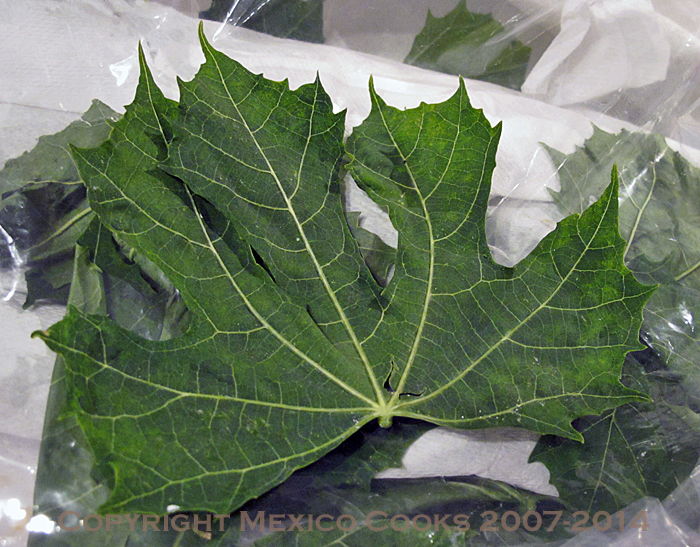 Tamales Chaya Leaf
