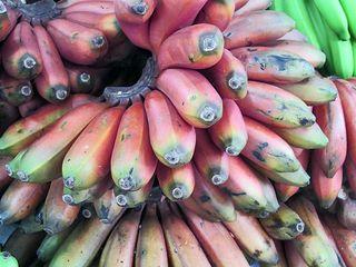 Jamaica Plátanos Morados