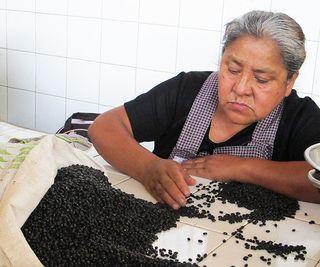Oaxaca Mercado 20 de noviembre Limpiando Frijol