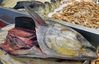 Mercado SJ Cabeza de Pescado copy