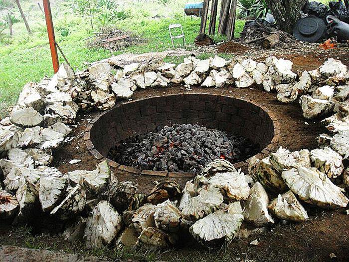 Uasïsï Piñas and Fire
