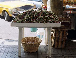 Guamuchiles vendor BERE