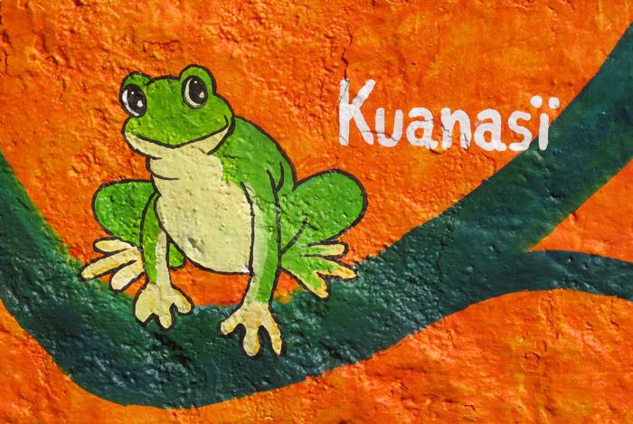 Santa Fe 7 Kuansï Frog