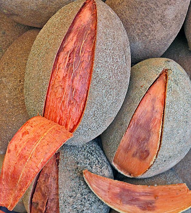 Mercado San Juan Morelia Mamey
