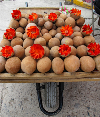 Oaxaca Tlacolula Mamey Resized