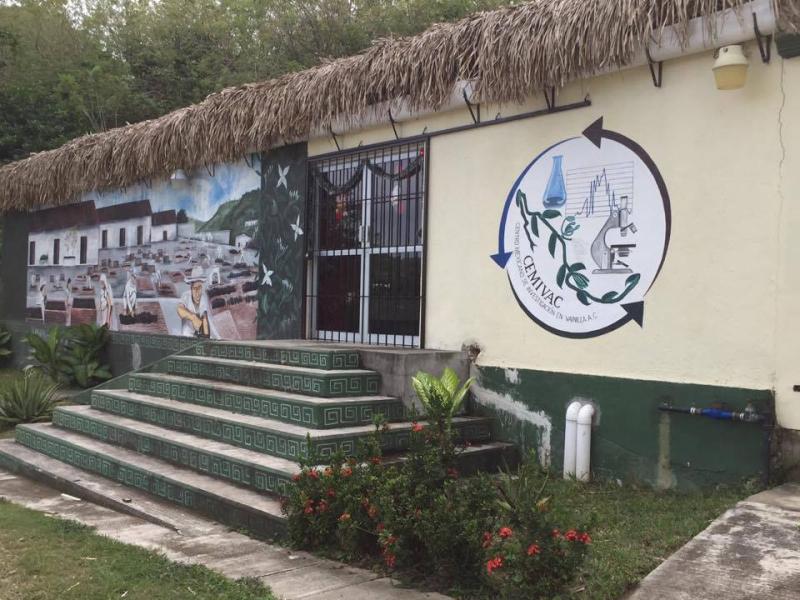 Veracruz Gaya Entrada