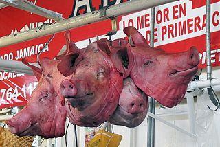 Hog Heaven Bouquet de Cabezas