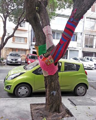 Knit Trees Condesa