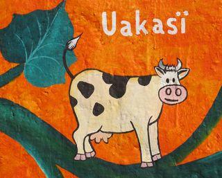 Santa Fe 9 Uakasï Vaca