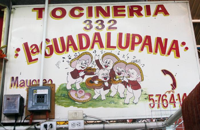 Tocinera La Guadalupana