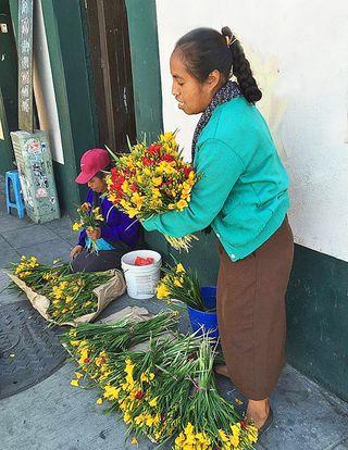 Oaxaca Vendedora de Freesias 2
