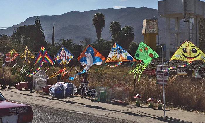Oaxaca Primavera Papalotes 2