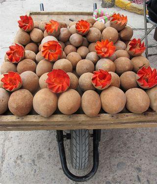 Oaxaca Tlacolula Mamey