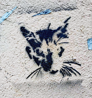 Flaneur Grafito Gato July 2016