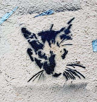 Flaneur Grafito Gato July 2016