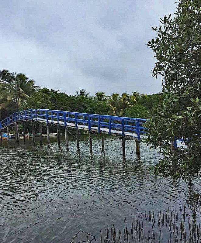 Mandinga Alvarado Puente 2