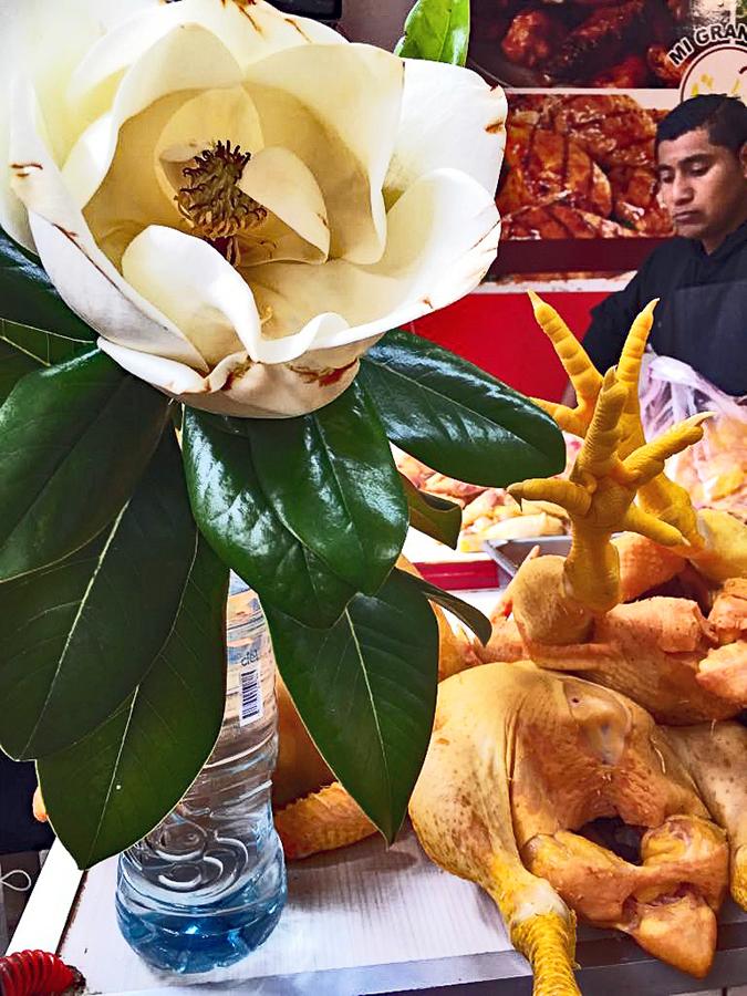 Oaxaca Mercado de la Merced Magnolia y pata de pollo 1