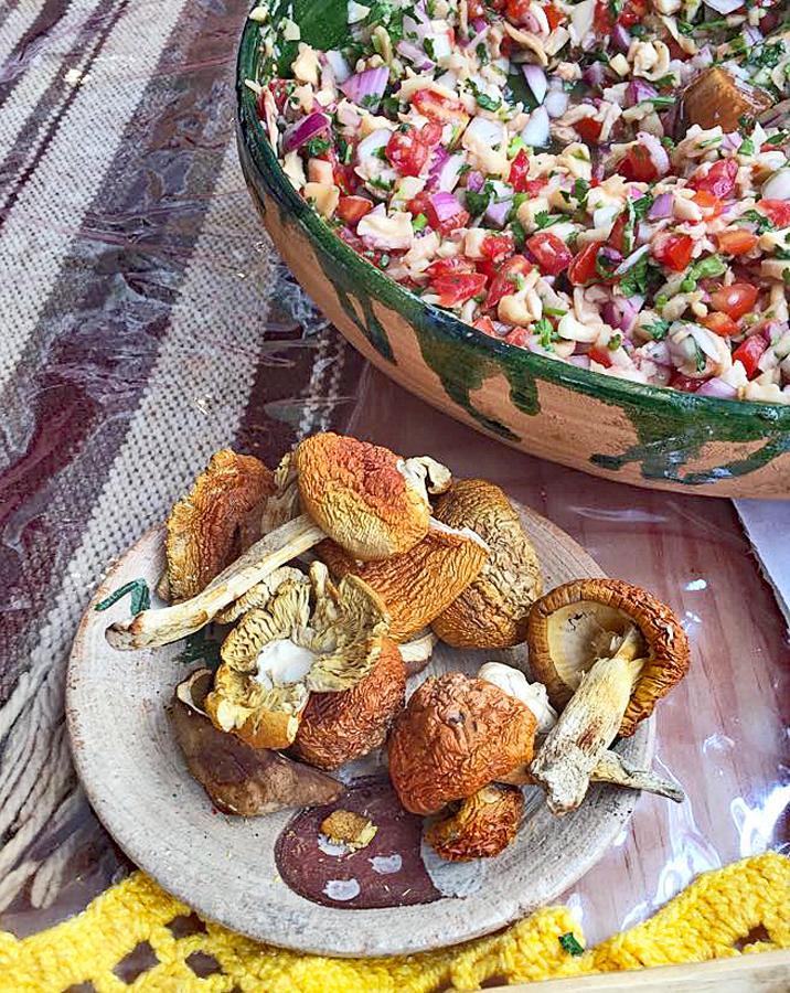 Encuentro Día 3 Ceviche de Hongos Silvestres Better