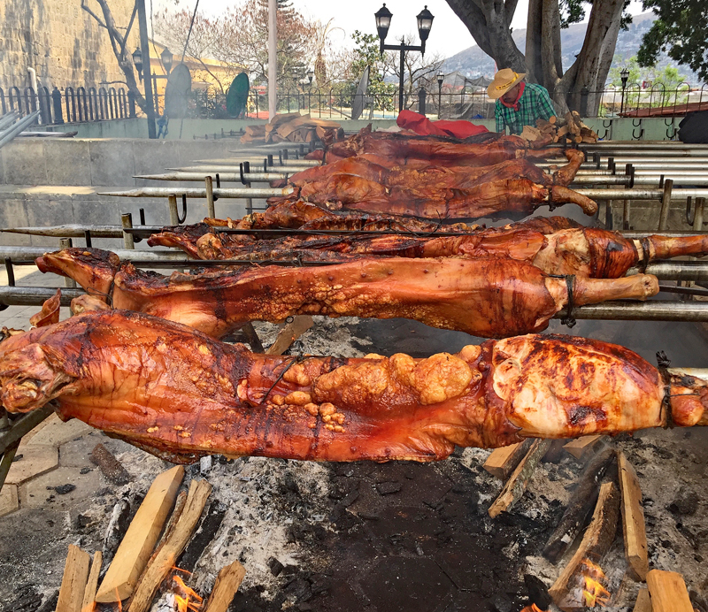Pigs Roasting 1