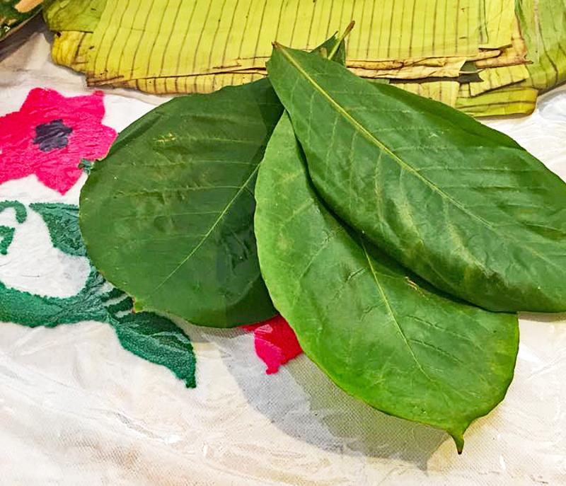 Encuentro Día 4 Holas de Almendro para Tamales 1