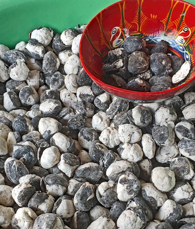 Tlacolula Cacao Fermentado