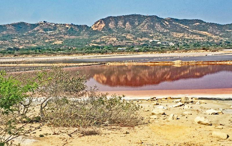 Silvana Salina Cruz Salt Flats