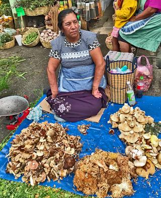 Doña Georgina Mercado de Jamaica 22 septiembre 2018 1a