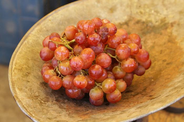 Uva Roja Tianguis Morelia