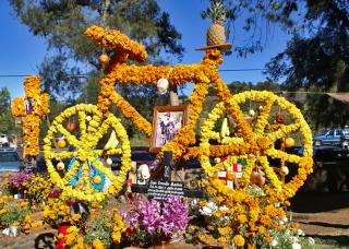 Altar de Muertos Bici Panteón Larousse