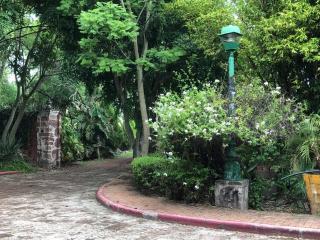 Hacienda Tzintimeo Camino