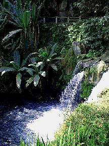 Uruapan Parque Nacional 1999 1